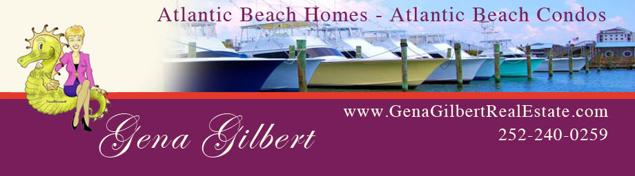 PROPERTIES AND INFO FROM THE CRYSTAL COAST BEACHES IN NC