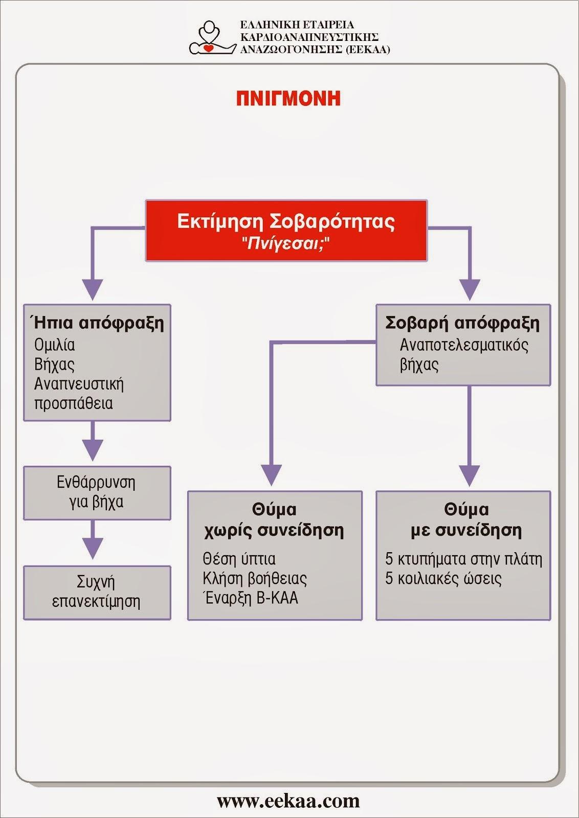 ΑΛΓΟΡΙΘΜΟΣ ΠΝΙΓΜΟΝΗΣ 2010 (EEKAA - ERC)