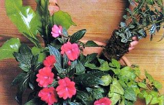 Composición Floral Paso a Paso, Tips y Secretos
