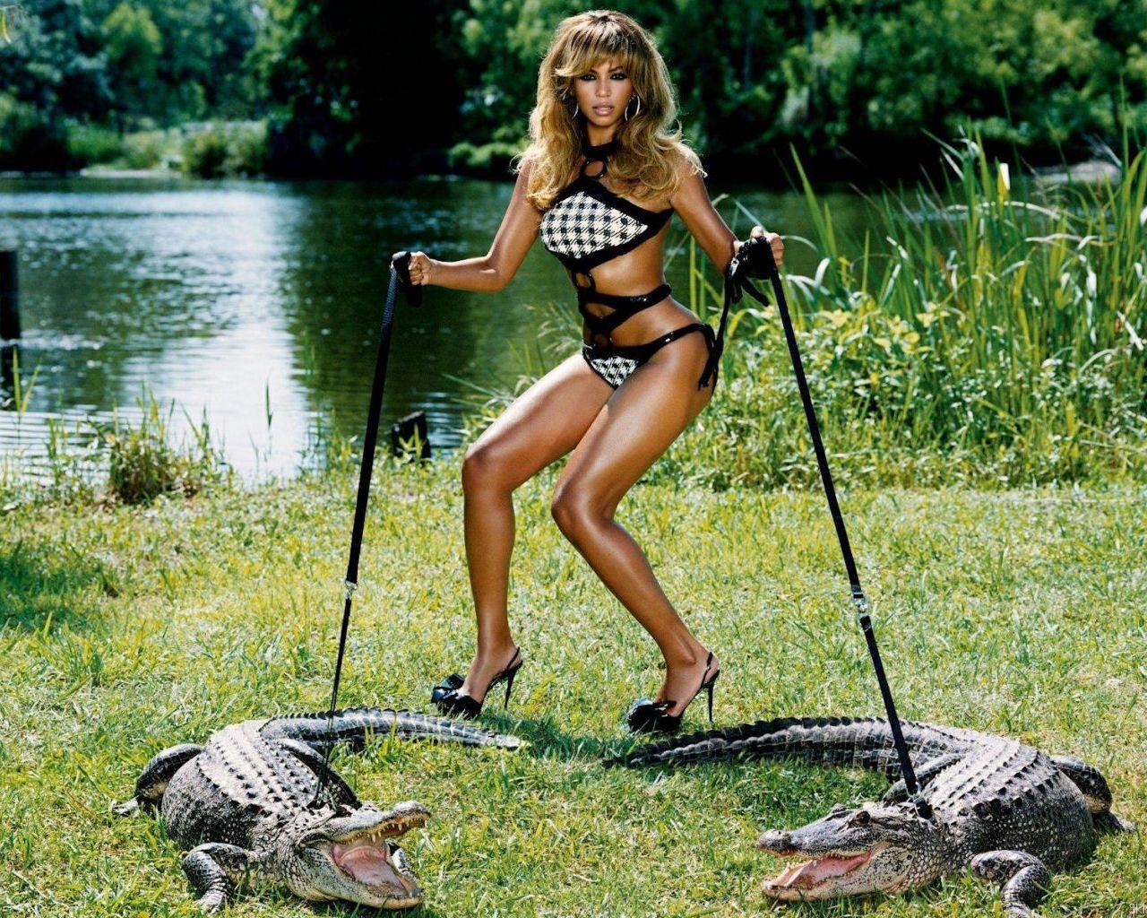 http://4.bp.blogspot.com/-g6KhzU3yUrM/TvcwTz4lH0I/AAAAAAAAHWg/9bXbPk5wS2s/s1600/crocodile-wallpaper-hd-3.jpg