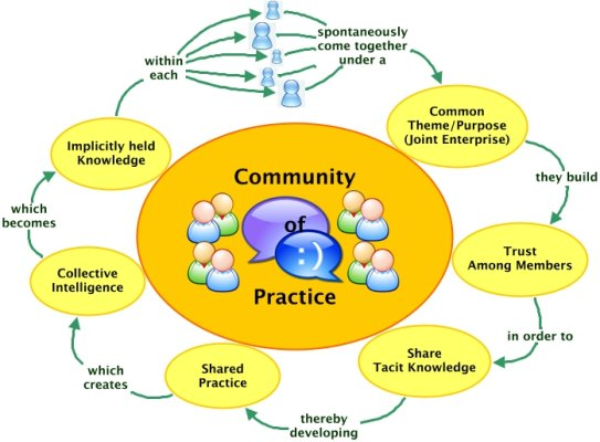 Essays on communities of practice