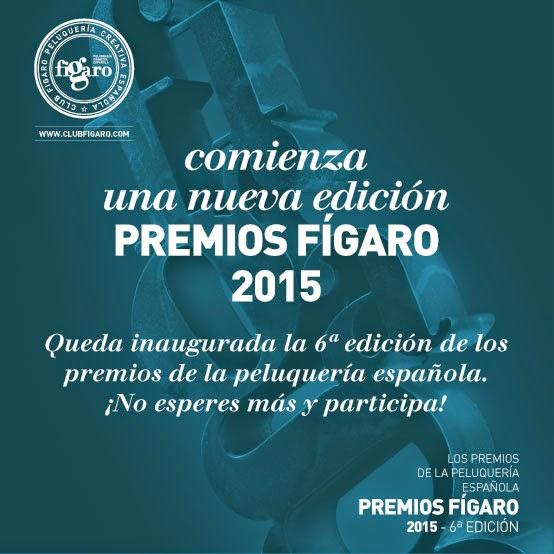 inscripción premios peluquería