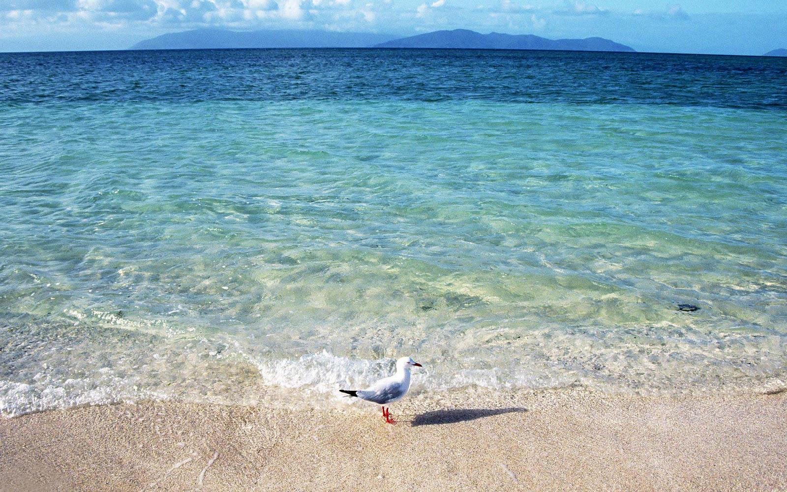 Zee achtergronden hd wallpapers - Wallpaper ocean blue ...