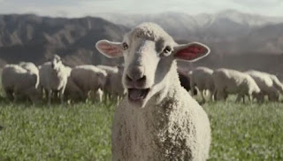 Honda Super Bowl 50 Ad features Sheep Singing Queen's Somebody to Love