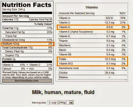 nutrisi susu ibu