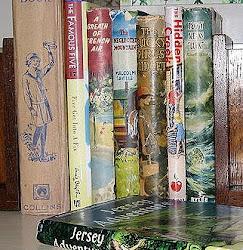 The Vintage Bookshelf Shop