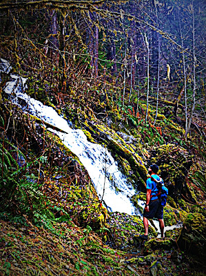 elwha trail running