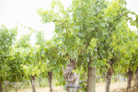 Shannon Hager Photography, Napa, Vineyards, Grapes