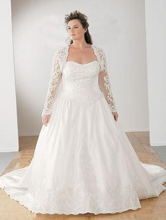 Princess A Line Plus Size Lace Wedding Gown