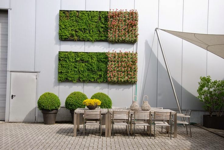 mini jard n vertical decora tu pared con plantas