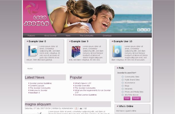 Pink Blue Grey Free Joomla 1.7 Theme Template