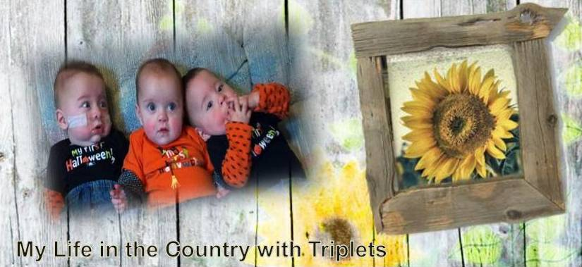 Life in the Country with Triplets