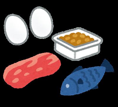 たんぱく質のイラスト(栄養素)