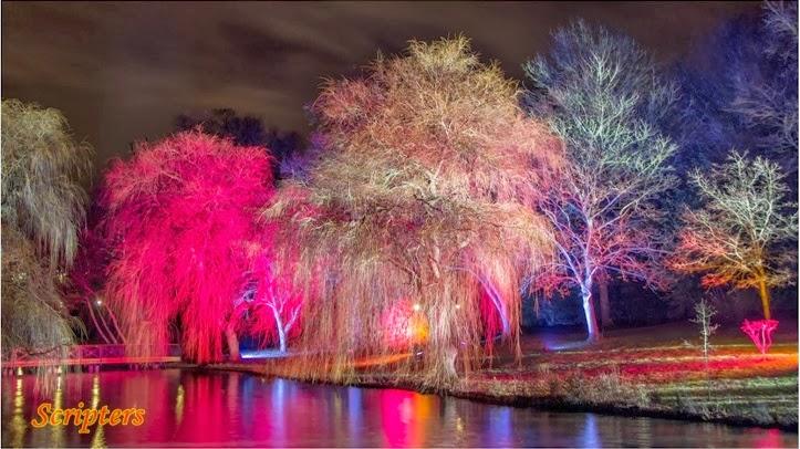 Pameran Lampu Berwarna Warni Di Syon Park, Middlesex London