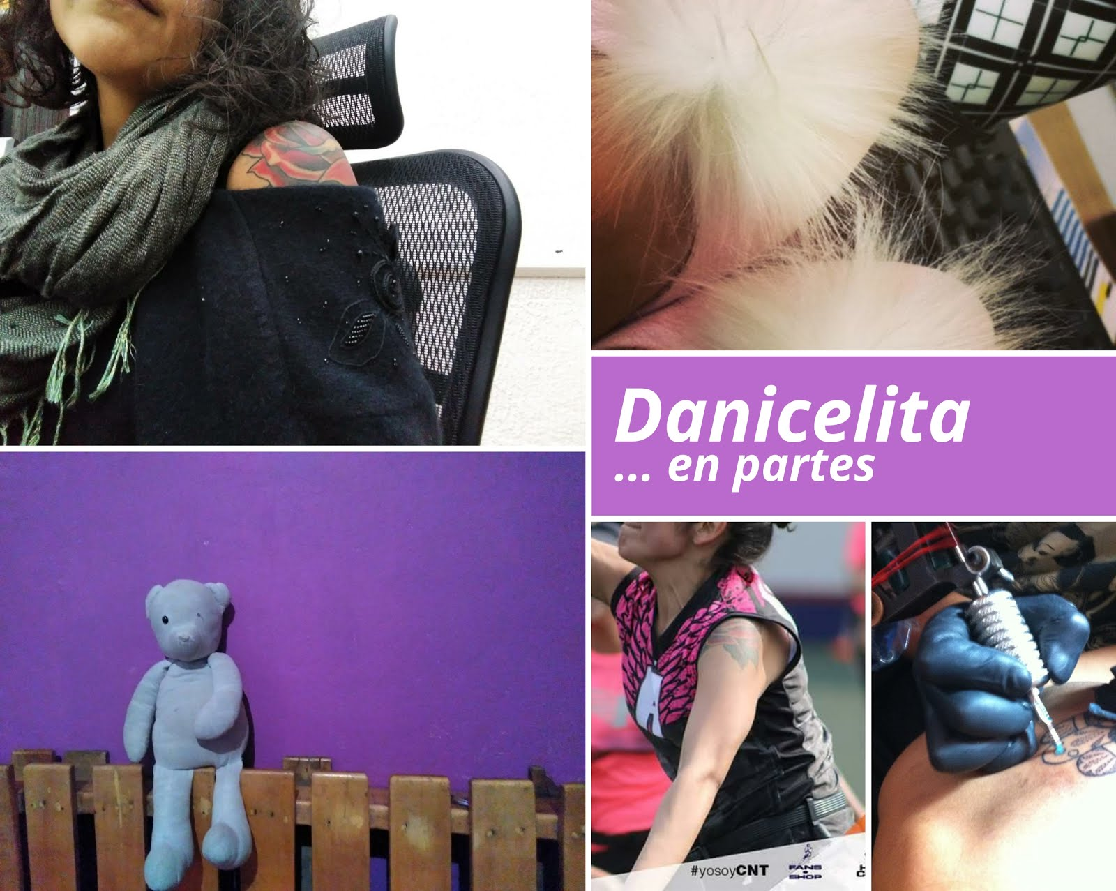 Danicelita... en partes