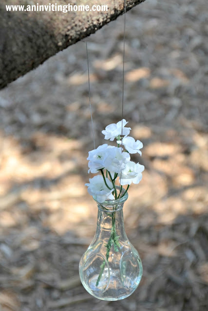 hanging vase from tree