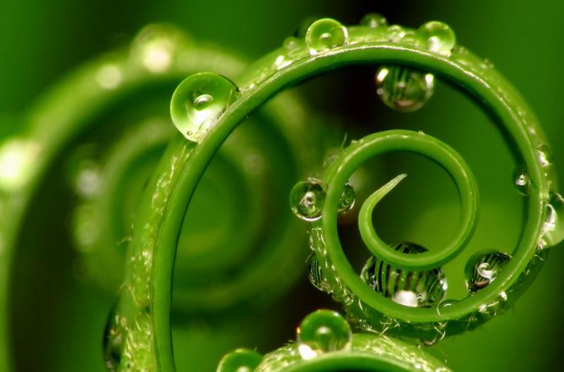 ciencia y religion naturaleza