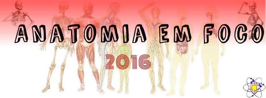 Anatomia em Foco 2016