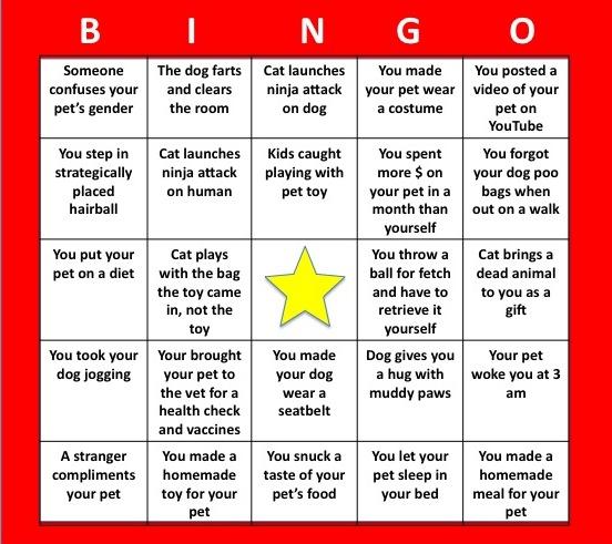 Vetwrite Pet Owners Bingo