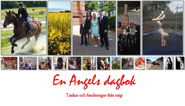 En Angels dagbok