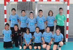 FINAL COMARCAL AROCHE 2010