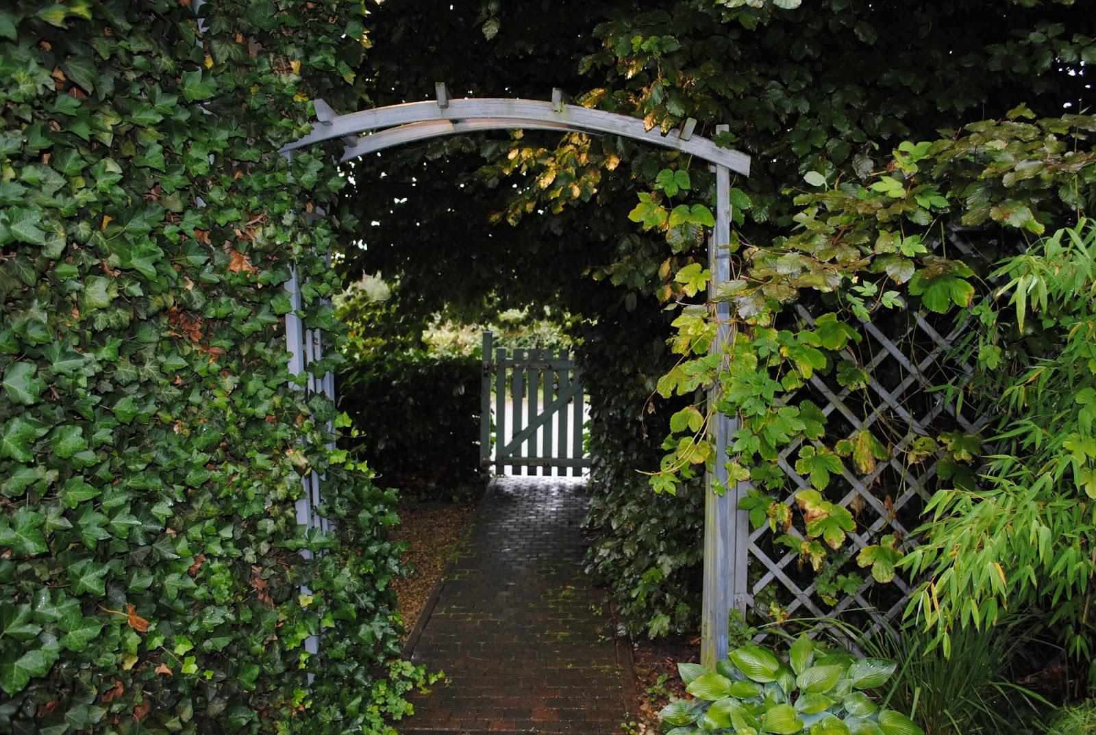 La passion d 39 anne marie petits tracas au jardin encore for Jardin encore
