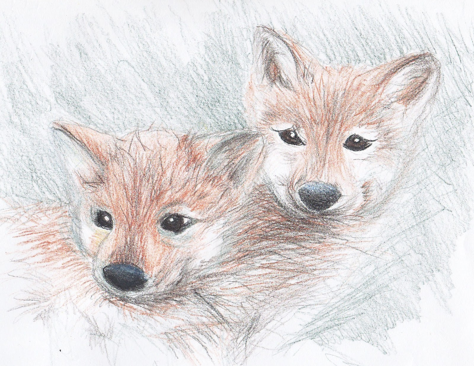 how to draw realistic wolf fur
