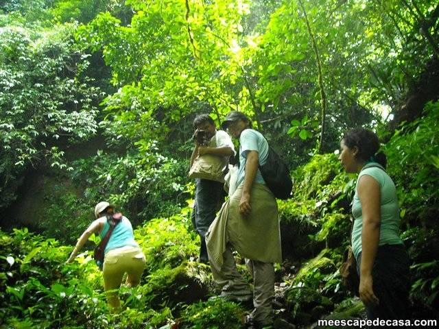 Caminata a las cascadas del Shilcayo, Perú (Maju, Abel, Dante y Paquita)