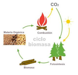 Esquema del ciclo del CO2 de la biomasa.