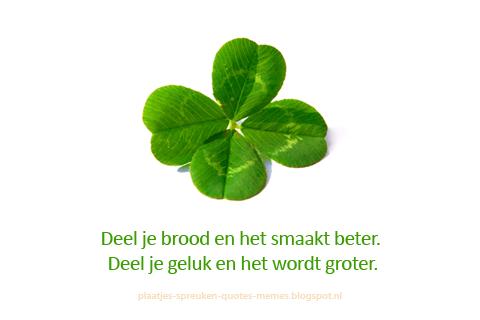 nederlandse spreuken en citaten