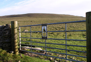 The terrifying 'Bull in field' sign