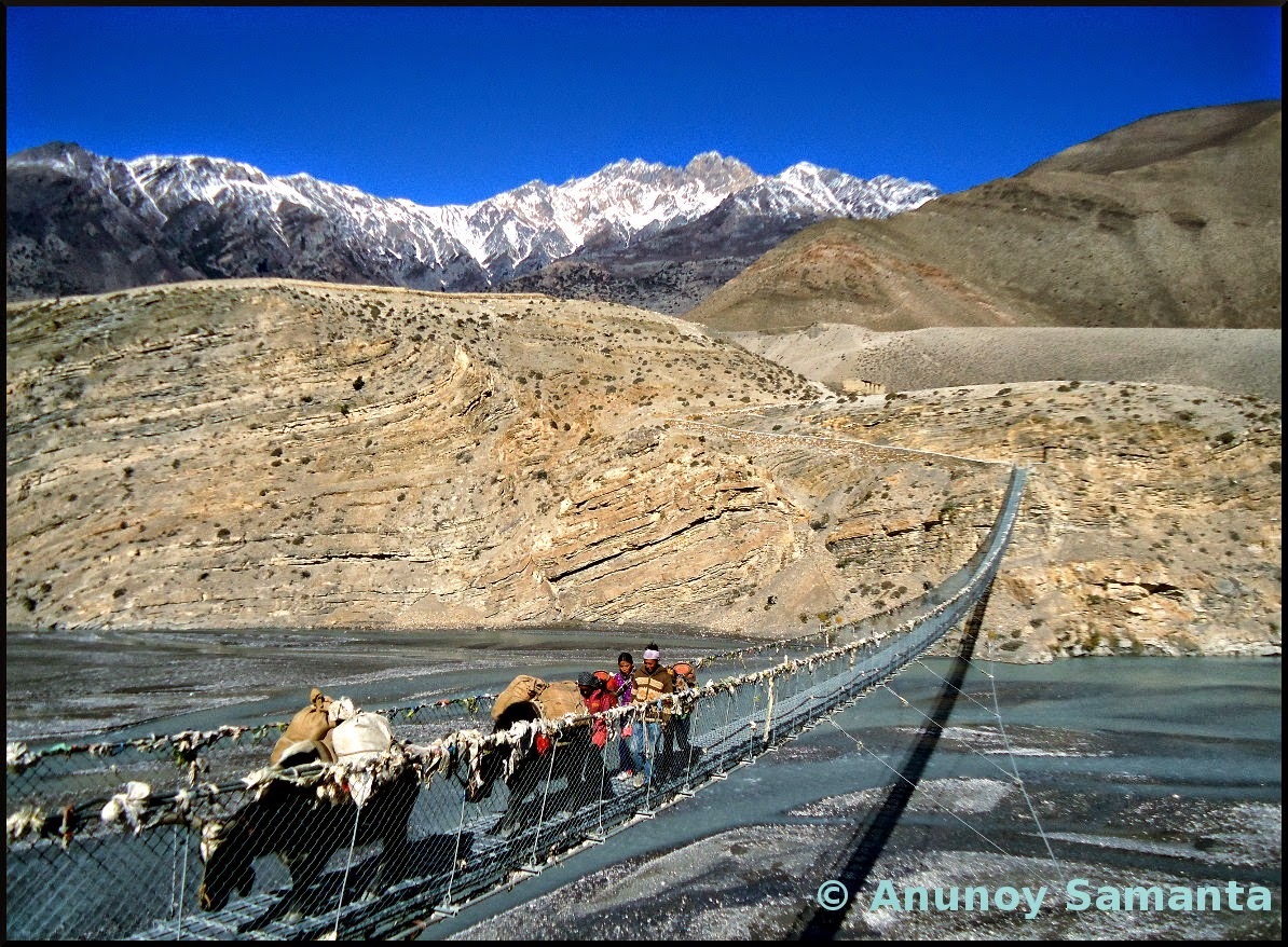 The Himalayan Transport