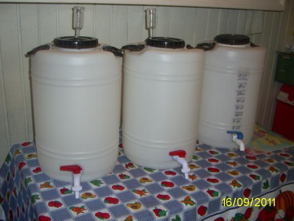 Insumos para cerveza artesanal birraekipos equipo for Estanque con plastico
