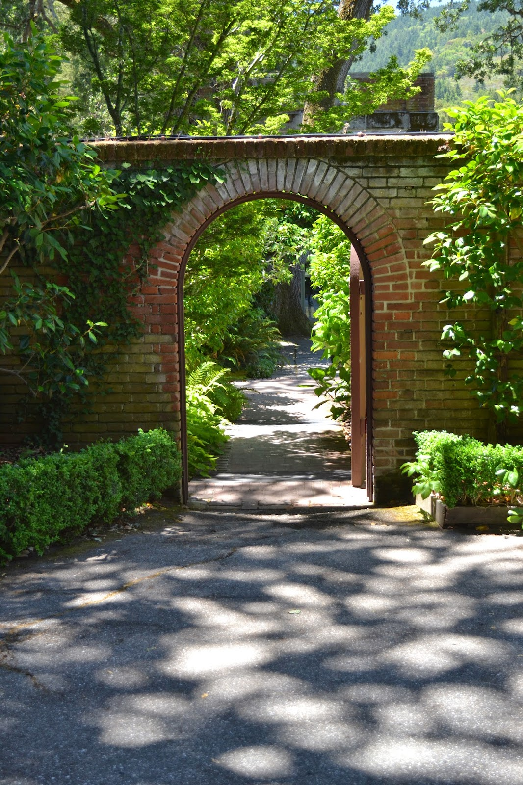 the outlaw gardener garden bloggers u0027 fling visiting filoli part