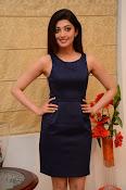 Pranitha Subhash Dynamite-thumbnail-9