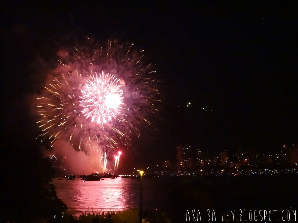 Vancouver's 2014 Celebration of Lights, Team Japan