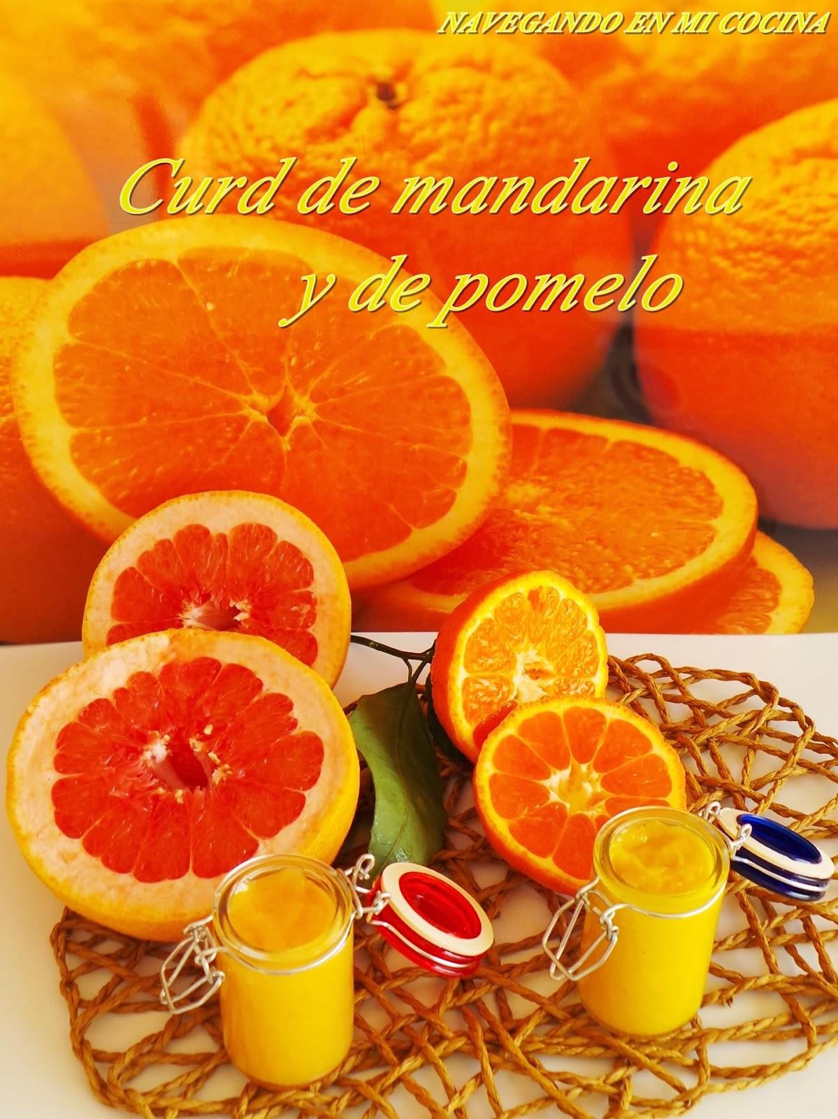 navegando en mi cocina curd de mandarina y de pomelo