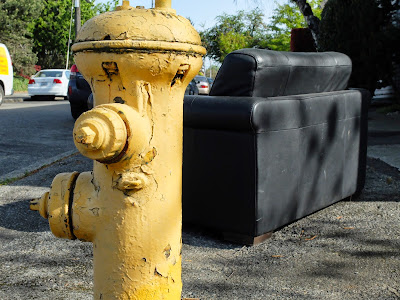 Loveseat and Fire Hydrant