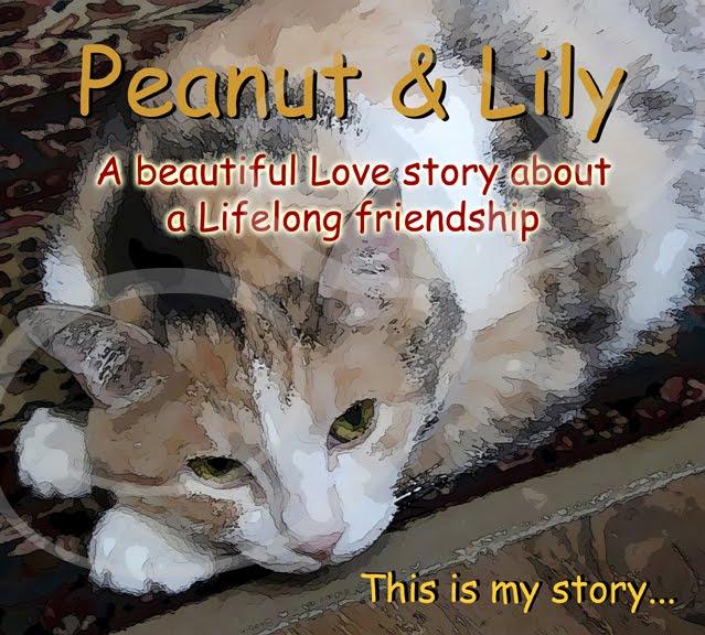 Peanut & Lily