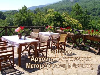 ΑΡΧΟΝΤΙΚΟ ΑΓΚΩΝΑΡΙ