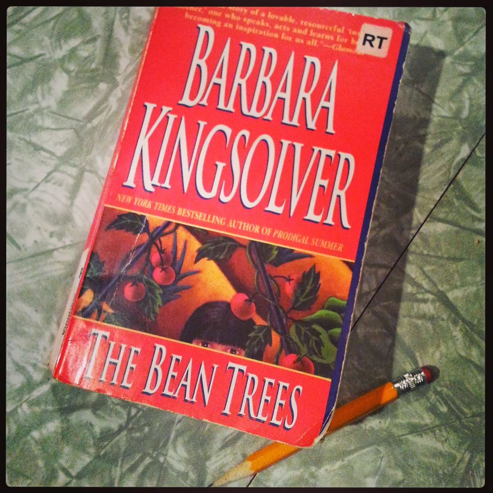 a summary of the book the bean trees by barbara kingsolver Free study guide for the bean trees by barbara kingsolver-booknotes upon crossing the pittman line, missy makes two promises to herself - one to change her name to the name of the first place she ran out of gas, the other, to settle down wherever her windowless, push start volkswagen.