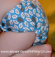 fit of boogie bear diapers