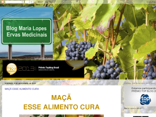 Novo Selo do Blog Maria Lopes e Ervas Medicinasi.