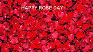 Happy-Rose-Day-2016-Images-Pictures-Status-for-Facebook-Whatsapp-Twitter-19