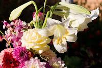 buque-de-flores