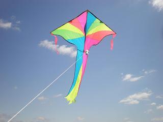 கர்நாடக சங்கீதம் - சுருதி, நாதம், ஒலி Kite_soaring