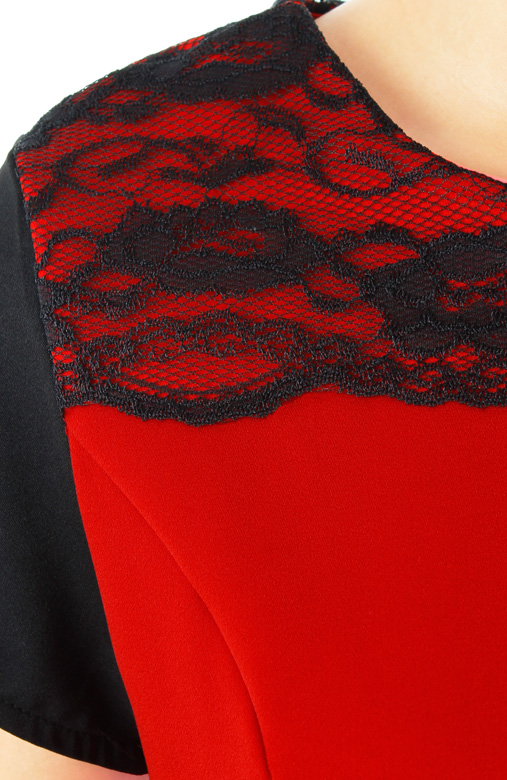 Red Graceful Lace Sheath Dress with Contrast Sleeves