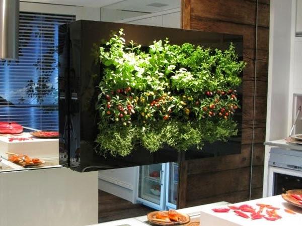 jardim vertical vasos meia lua : jardim vertical vasos meia lua:Uma das formas de se fazer um quadro vivo é através da lã de vidro