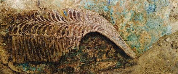Ασύλητος τάφος αρχαίου πολεμιστή βρέθηκε στην Πύλο, με ευρήματα ανεκτίμητης αξίας