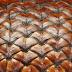Makro kulit buah salak